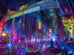 Para melhorar ainda mais: 95 artistas são adicionados ao lineup do Electric Forest 2017