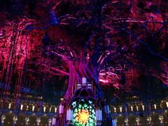 Confira os 4 palcos digitais do Tomorrowland 31.12.2020